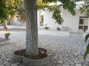 Casa Biagio